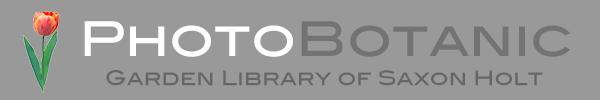 PhotoBotanic Stock Photography Garden Library