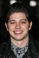 """LOS ANGELES, CA - FEBRUARY 04: Chris Galya at the Los Angeles Premiere Of The Weinstein Company's """"Vampire Academy"""" held at Regal Cinemas L.A. Live on February 4, 2014 in Los Angeles, California. (Photo by Xavier Collin/Celebrity Monitor)"""