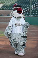 August 11, 2009: Idaho Falls Chukars mascot. The Chukars are the Pioneer League affiliate for the Kansas City Royals. Photo by: Chris Proctor/Four Seam Images
