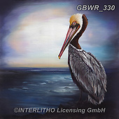 Simon, REALISTIC ANIMALS, REALISTISCHE TIERE, ANIMALES REALISTICOS, innovativ, paintings+++++RiverPeacock_Pelly,GBWR330,#a#, EVERYDAY