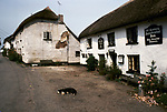 The Village Pub. The Mason Arms, Knowstone, Devon. A small 13th century farm pub thatched and with crumbling exterior walls. 1990s 1991
