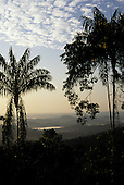 Para State, Brazil. Palm and deciduous trees in silhouette at dawn in the Amazon rainforest; Serra dos Carajas.
