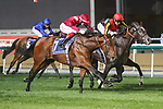 March 27, 2021: MISHRIFF #7 ridden by David Egan wins The Group 1 Dubai Sheema Classic giving trainer John Gosden a double on Dubai World Cup Day, Meydan Racecourse, Dubai, UAE. Shamela Hanley/Eclipse Sportswire/CSM