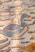 Duck mosaic - Roman mosaics at the Villa Romana del Casale which containis the richest, largest and most complex collection of Roman mosaics in the world. Constructed  in the first quarter of the 4th century AD. Sicily, Italy. A UNESCO World Heritage Site.