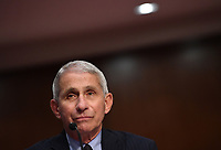 Dr. Anthony Fauci, director of the National Institute for Allergy and Infectious Diseases, testifies before the Senate Health, Education, Labor and Pensions (HELP) Committee on Capitol Hill in Washington DC on Tuesday, June 30, 2020.  Fauci and other government health officials updated the Senate on how to safely get back to school and the workplace during the COVID-19 pandemic.<br /> Credit: Kevin Dietsch/CNP/AdMedia