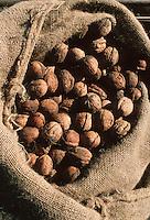 Europe/France/Limousin/19/Corrèze/Env Argentat : Ramassage des noix