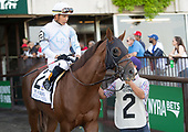 4th Vosburgh - Imperial Hint