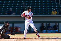 Mesa Solar Sox first baseman David MacKinnon (20), of the Los Angeles Angels organization, at bat during an Arizona Fall League game against the Salt River Rafters at Sloan Park on October 30, 2018 in Mesa, Arizona. Salt River defeated Mesa 14-4 . (Zachary Lucy/Four Seam Images)