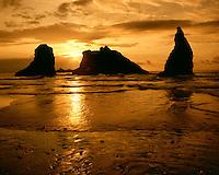 Sunset light on Bandon Beach on the Pacific Ocean, Bandon, OR
