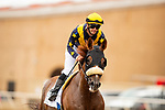 JULY 24, 2021: United with Flavien Prat in the Eddie Read Stakes at the Del Mar Fairgrounds in Del Mar, California on July 24, 2021. Evers/Eclipse Sportswire/CSM