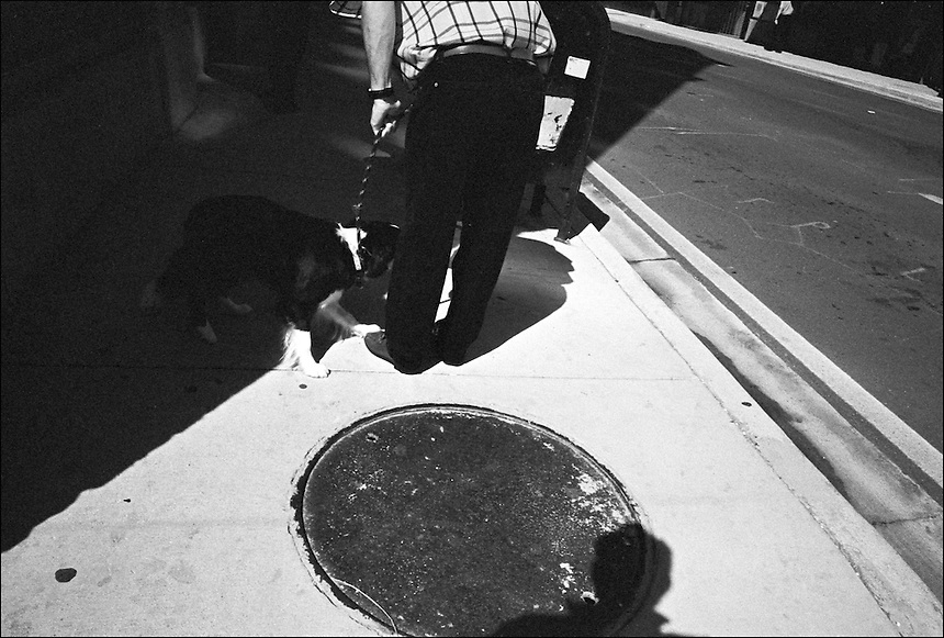 """Teaching manners<br /> From """"Walking Downtown"""" series. Miami, FL, 2009"""