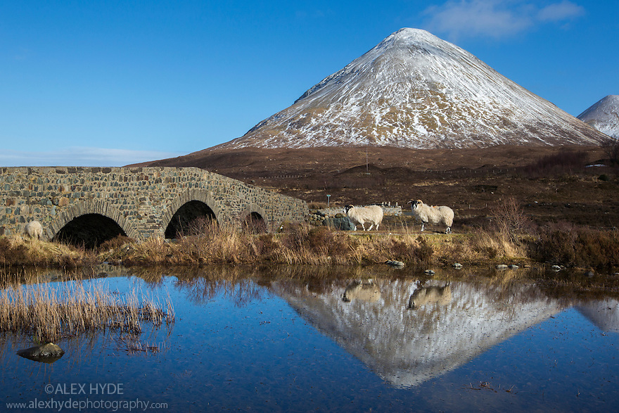 Bridge at Sligachan with the Cullin peak of Glamaig in the background, Isle of Skye, Scotland, UK. March. This area is managed by the John Muir Trust.