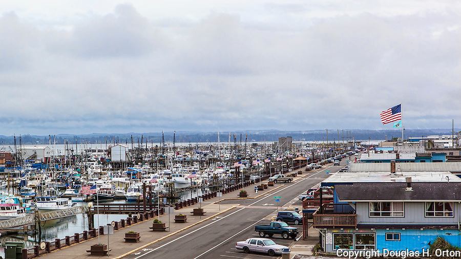 View of downtown Westport, WA and the famous Westport harbor where fishing is king.  Charter fishing, commercial fishing.  Surfing.