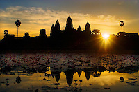 Stone temples representing the five peaks of Mount Meru reflected in a lotus pond at an Angkor Wat sunrise, built in the 11th century by Suryavarman II -  Siem Reap, Cambodia..