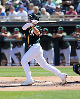 Matt Chapman - Oakland Athletics 2020 spring training (Bill Mitchell)