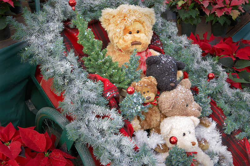 Christmas bears. Al's Nursery. Woodburn. Oregon