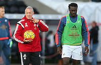 Swansea City caretaker manager Alan Curtis and striker Bafetibis Gomis before the Barclays Premier League match between Swansea City and West Ham United played at The Liberty Stadium, Swansea on 20th December 2015