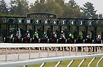 """LEXINGTON, KY - October 8, 2017. Start of the Juddmonte Spinster.<br /> #11 Romantic Vision and jockey Brian Hernandez Jr. win the 62nd running of the Juddmonte Spinster Grade 1 $500,000 """"Win and You're In Breeders' Cup Distaff Division"""" for owner G. Watts Humphrey Jr. and trainer George Arnold at Keeneland Race Course.  Lexington, Kentucky. (Photo by Candice Chavez/Eclipse Sportswire/Getty Images)"""
