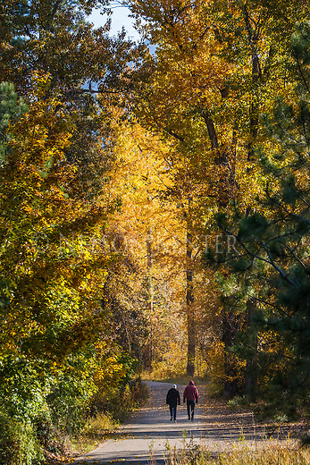 A couple walking on a trail through the trees in Greenough Park in Missoula, Montana on a fall morning