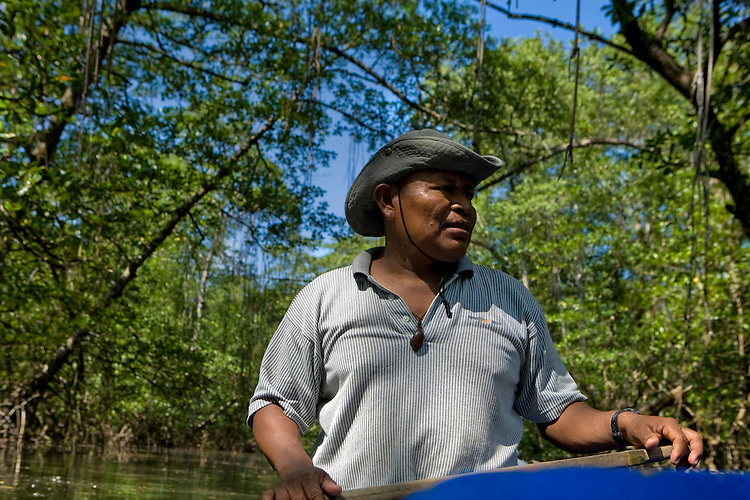 Milton, a knowledgeable Ngobe guide, takes tourists on a canoe down a mangrove-lined creek in Bahia Honda, Isla Bastimentos, Bocas del Toro, Panama