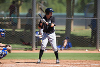Alex Call (8) of the Chicago White Sox at bat during an Instructional League game against the Los Angeles Dodgers on September 30, 2017 at Camelback Ranch in Glendale, Arizona. (Zachary Lucy/Four Seam Images)