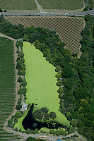 aerial photograph algae covered reservoir Sonoma County, California