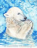 Sinead, CHRISTMAS ANIMALS, WEIHNACHTEN TIERE, NAVIDAD ANIMALES, paintings+++++,LLSJ2149,#xa# ,icebear,icebears ,polarbear