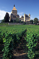 castle, Switzerland, La Cote, Vaud, Vufflens-le-Chateau surrounded by vineyards.