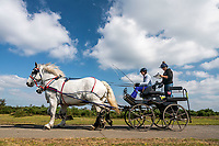 The New Forest Heavy Horse Driving Trial returns to the former site of RAF Beaulieu.