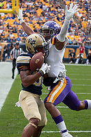 Pitt wide receiver Rafael Araujo-Lopes makes a 3-yard touchdown catch over Albany safety Tyler Carswell. The Pitt Panthers football team defeated the Albany Great Danes 33-7 on September 01, 2018 at Heinz Field, Pittsburgh, Pennsylvania.