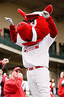 "Arkansas Mascot ""Ribbi"";March 10th, 2010; South Dakata State University vs Arkansas Razorbacks at Baum Stadium in Fayetteville Arkansas. Photo by: William Purnell/Four Seam Images"