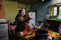 """Mexico, Guanajuato, San Miguel de Allende, Lagunilla. Pulque Ranch. Beatriz and her husband Francisco live in the community of Lagunilla. They have two large maguey fields where they produce pulque, a traditional beverage. Pulque is an ancient drink extracted from the maguey cactus. It is first harvested as a sweet honey-like juice called """"aguamiel,' that is then mixed with the older fermented juice kept in clay pot which makes the pulque. This is about 5% alcoholic and filled with nutrients. The plants take about ten years to mature, and the plants will produce juice for about three months. The heart of the cactus fills with liquid and is scraped three times a day for its juices. It is considered the beverage of the gods. Beatriz making chicken mole and vegetables in the kitchen."""