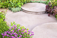 Spiky flowers of Chives Allium in bloom, lady's mantle Achelmilla, foliage plants, Heuchera, deck, patio, circular tiered cement patio landscaping garden, embracing shapes in the garden