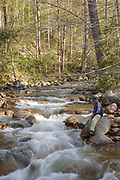 A hiker enjoys the Mad River which is on the side of Greeley Ponds Trail in the White Mountains, New Hampshire. During the logging era, the Mad River was used for log drives.