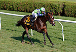 Rushing Fall (no. 6) wins the Lake Placid Stakes  (Grade 2) Aug. 18, 2018 at the Saratoga Race Course, Saratoga Springs, NY.  Ridden by  Javier Castellano, and trained by Chad Brown,  Rushing Fall finished 2 3/4 lengths in front of Capla Temptress (no. 3).  (Bruce Dudek/Eclipse Sportswire)