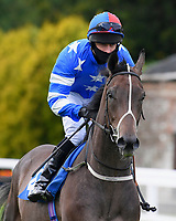 Mountain Ash ridden by Charlie Bennett goes down to the start of The Radcliffe & Co Novice Median Auction Stakes (Div 1) during Horse Racing at Salisbury Racecourse on 11th September 2020