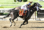 Sahara Sky with Joel Rosario run down Cross Traffic to win the 121st running 0f the Grade I Metropolitan Handicap for 3-year olds & up, going 1 mile, at Belmont Park.  Trainer Jerry Hollendorfer  Owners Jerry Hollendorfer and Kim Lloyd