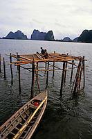 Men constructing a pile dwelling, Phang Nga Bay, Thailand.