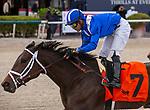 January 30, 2021:  Zaajel with jockey Luis Saez on board, wins the Forward Gal GIII Stakes at Gulfstream Park in Hallandale Beach, Florida. LizLamont/Eclipse Sportswire/CSM