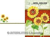 Alfredo, FLOWERS, BLUMEN, FLORES, paintings+++++,BRTOXX01958,#F# ,sun flower,
