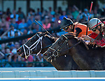 OCEANPORT, NJ - JUL 30: Girvin #7, ridden by Robby Albarado gets a nose in front at the finish line to win the betfair.com Haskell Invitational on Haskell Invitational Day at Monmouth Park Race Course on July 30, 2017 in Oceanport, New Jersey (Photo by Scott Serio/Eclipse Sportswire/Getty Images)
