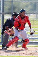 Boston Red Sox minor league catcher Oscar Perez (29) during a game vs. the Minnesota Twins in an Instructional League game at Lee County Sports Complex in Fort Myers, Florida;  October 1, 2010.  Photo By Mike Janes/Four Seam Images