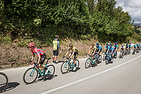 peloton cntrolled by Team Jumbo-Visma for red jersey (overall leader) Primoz Roglic (SVK/Jumbo-Visma)<br /> <br /> Stage 13: Bilbao to Los Machucos to Monumento Vaca Pasiega (166km)<br /> La Vuelta 2019<br /> <br /> ©kramon