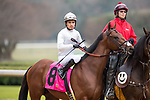 February 17, 2020: Taishan (8) with jockey Mario Gutierrez aboard during the Southwest Stakes at Oaklawn Racing Casino Resort in Hot Springs, Arkansas on February 17, 2020. Ted McClenning//Eclipse Sportswire/CSM