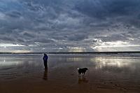 A dog walker on the beach