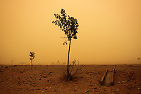Desertification In China [2008-2011]