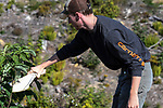 Maine Department of Inland Fisheries and Wildlife Wildlife Technician, Carter Barthelman, brushes a moose antler against brush and trees mimicking the sound made by a bull moose during theor rut. Using a moose scapula to scrap and thrash trees imitates a bull thrashing its antlers with his increased tension and challenge during this time.