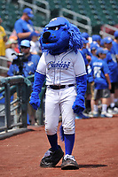 "One of the Omaha Storm Chasers mascots ""Casey"" in action prior to the game against the Oklahoma City Dodgers at Werner Park on June 24, 2018 in Omaha, Nebraska. Omaha won 8-0.  (Dennis Hubbard/Four Seam Images)"