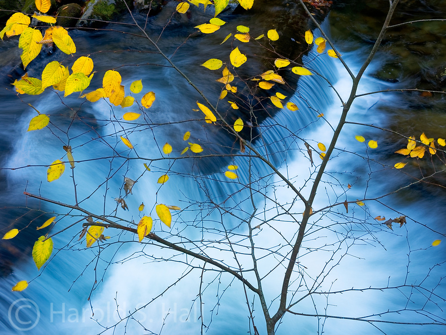 The Pigeon River in the Smoky Mountains provide for some simple late Fall compositions.