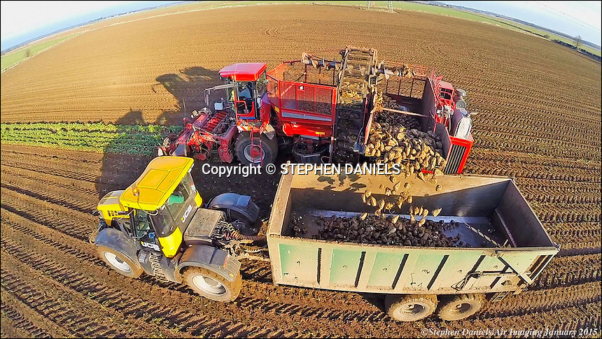 Photo by © Stephen Daniels/Air Imaging 27/01/2015 <br /> >Holmer Beat Harvester & JCB Fast Track at work on Aubourn Farm, ear Lincoln, Lincs